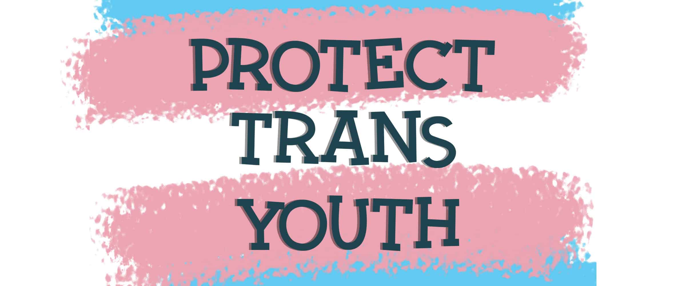 protect trans youth blog banner